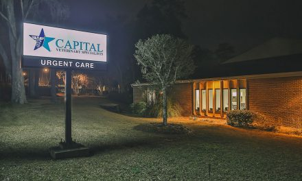 Capital Veterinary Specialists