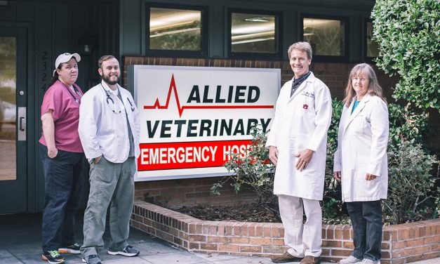 Allied Veterinary Emergency Hospital